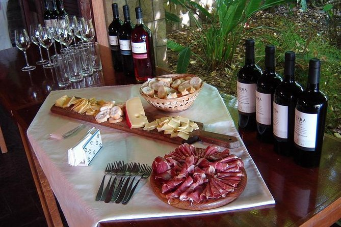 Regular Wine Tour with Tasting
