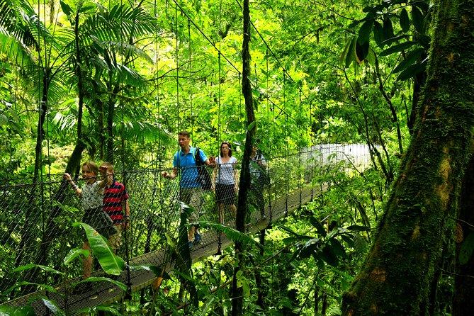 Arenal Hanging Bridges Nature Tour