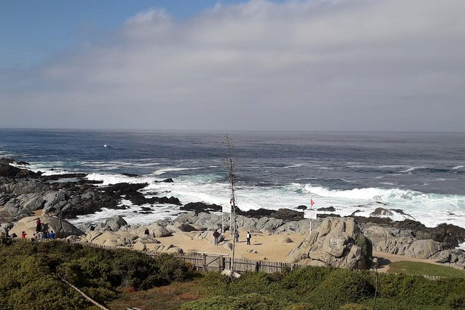 Full-Day Private Tour: Isla Negra, Pomaire and Matetic Vineyard photo 21