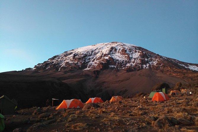 7 days Rongai route climbing Mt. Kilimanjaro
