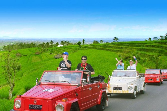 Bali Swing - Coffee Plantation - Waterfall - Ulun Danu Batur using VW Safari Car