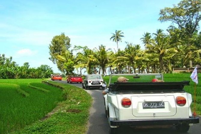 VW Safari Bali Tour - A unique way to explore Ubud culture