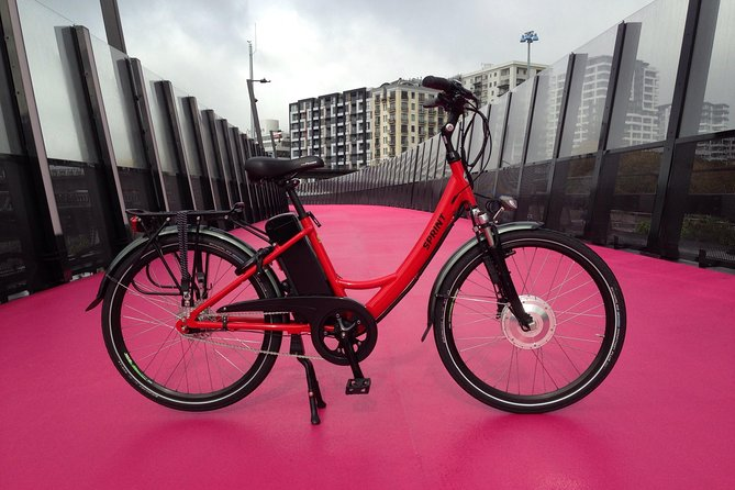 Auckland City Discovery E-Bike Tour