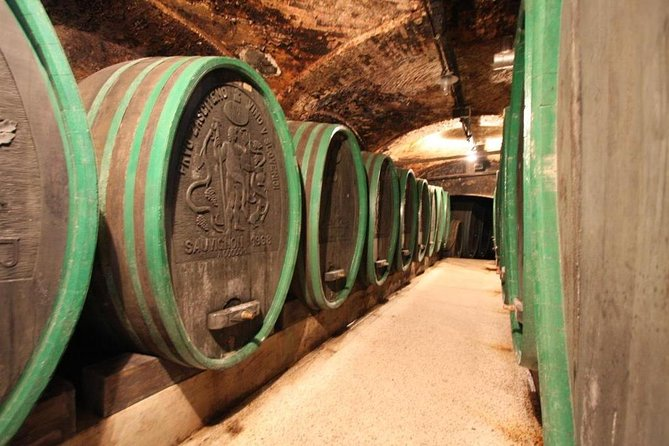 Medieval Ptuj and Maribor Private Day Trip with Wine Tasting from Ljubljana or Bled