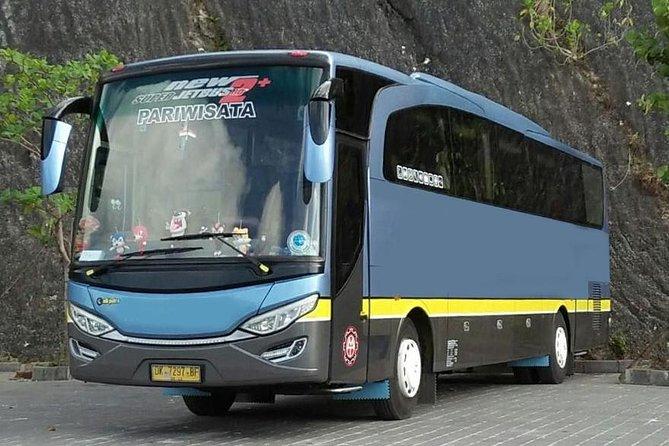 Bali Bus 29 seats