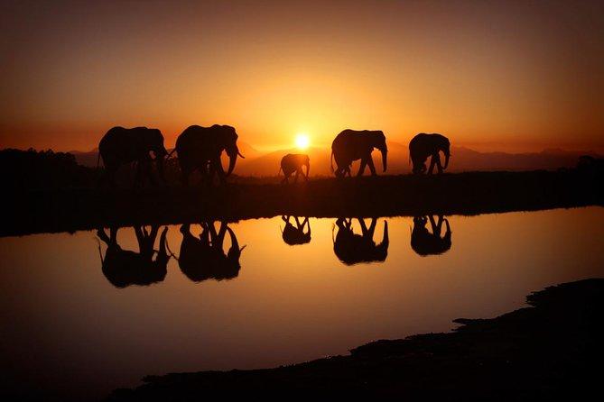 5-Day Safari tour to Serengeti & Lake Manyara national parks from Arusha