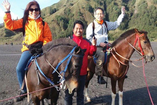 Mount Bromo & Mount Ijen Tour - Homestay