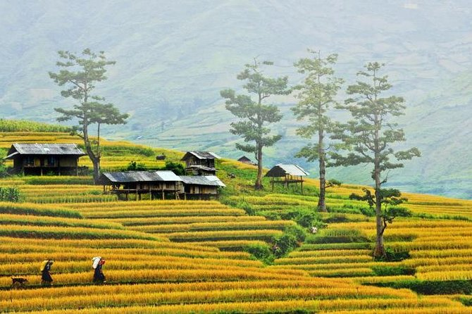 Private Sapa tour 3 days 2 nights