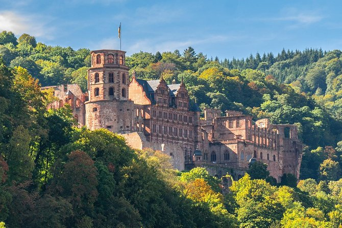 Heidelberg tour with a professional guide Including Castle visit
