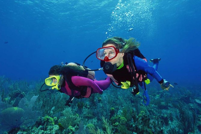 Scuba Diving Tour From Alanya - Side - Manavgat