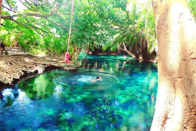 Materuni waterfalls, coffee tour & Chemka (Kikuletwa) hot springs