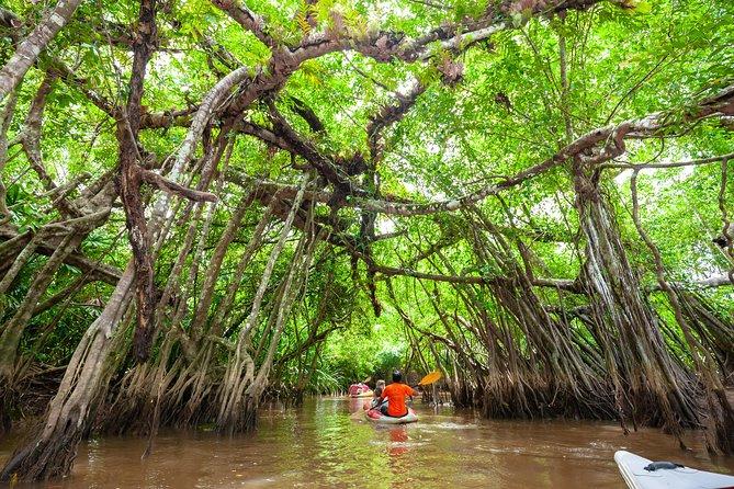 Little Amazon & Sightseeing at Takua Pa