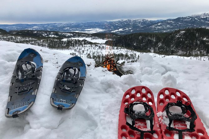 Snowshoe hiking in Oslomarka, explore authentic nature