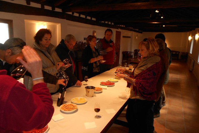 Wine tasting in a winery in the province of Toledo