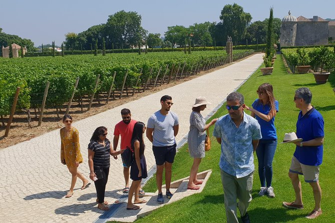 Private Tour Arrábida Park and Wine Tasting photo 21