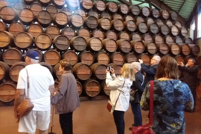 Private Tour Arrábida Park and Wine Tasting photo 19