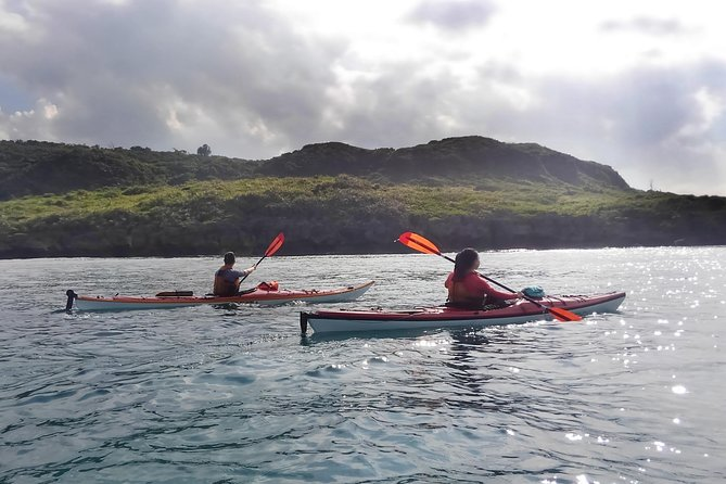 Kayak Northern Okinawa, customised and private tours photo 7