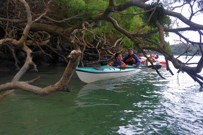 Kayak Northern Okinawa, customised and private tours photo 6