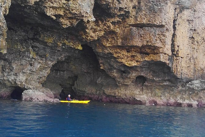 Kayak Northern Okinawa, customised and private tours photo 3