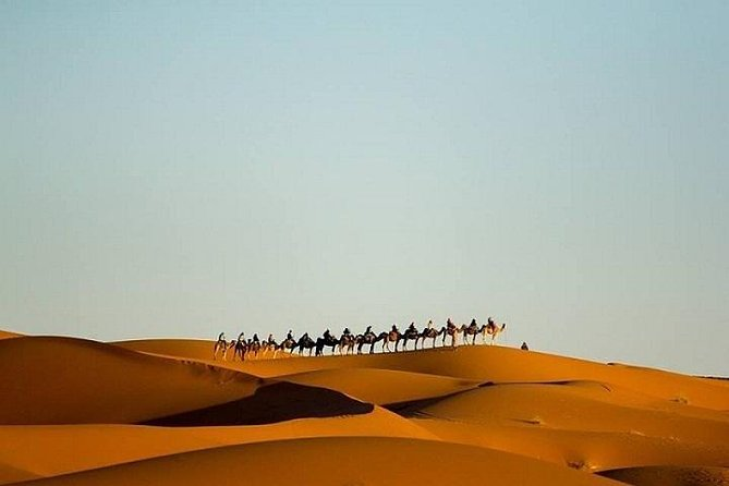 Camel Trek With Private Tent In Desert Departing From Merzouga