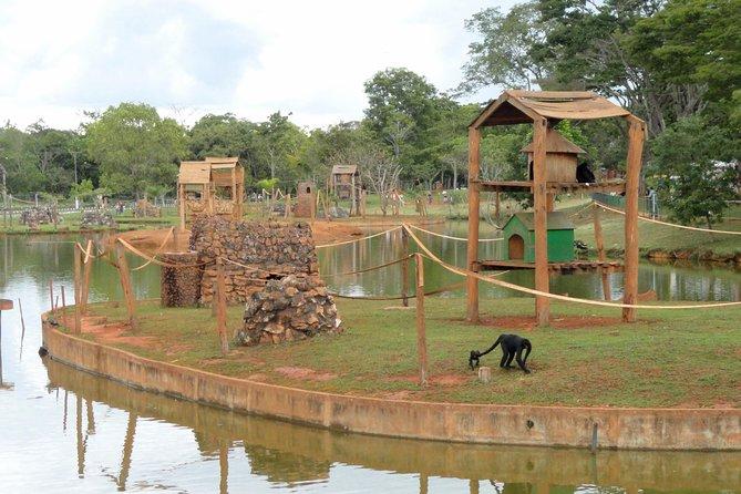 Brasilia's Zoo Admission Ticket