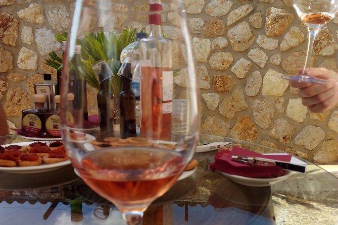 Palma de Mallorca: Guided tour for wine lovers