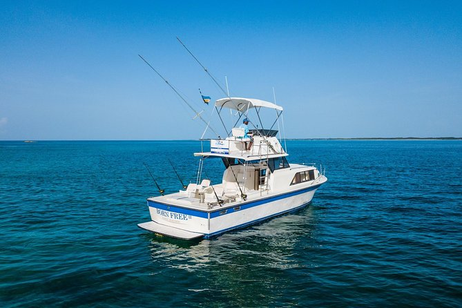 Private Half-Day Boat Charter in Nassau 35ft