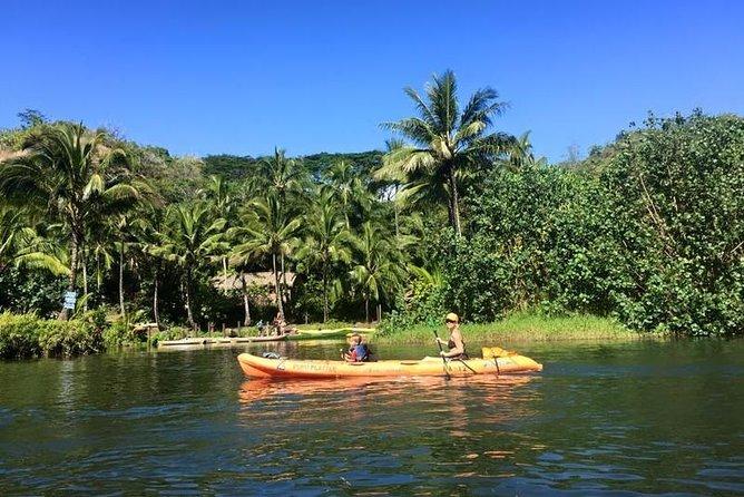 Guided Kayak Adventure on the Wailua River