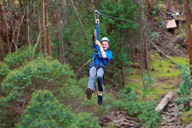 Haleakala 5 Line Zipline Adventure