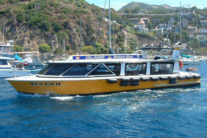 45-Minute Catalina Island Glass-Bottom Boat Tour from Avalon
