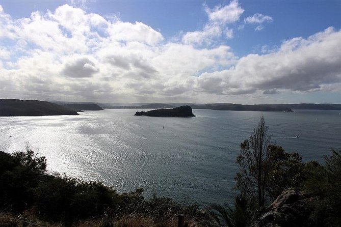 Sydney Harbour, Northern beaches and National Park photo 17