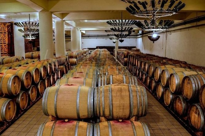 Winery Day Trip from Costa Navarino with Food and Wine Tastings