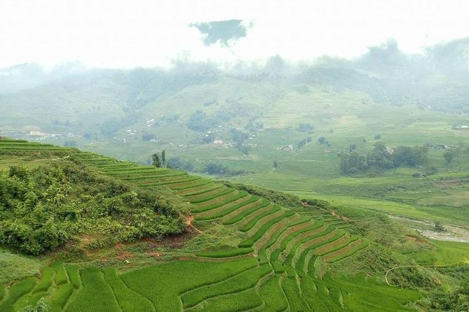 From Hanoi: Sa Pa 3-Day Trek with Ethnic Homestay