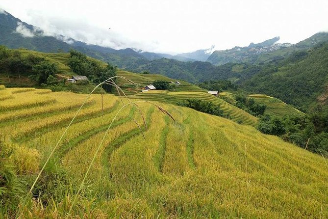 From Hanoi: 3-Day Sapa Trekking and Homestay with Bus Tour