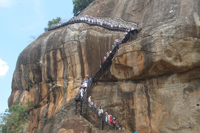Day Tour to Minneriya Safari and Sigiriya rock photo 10
