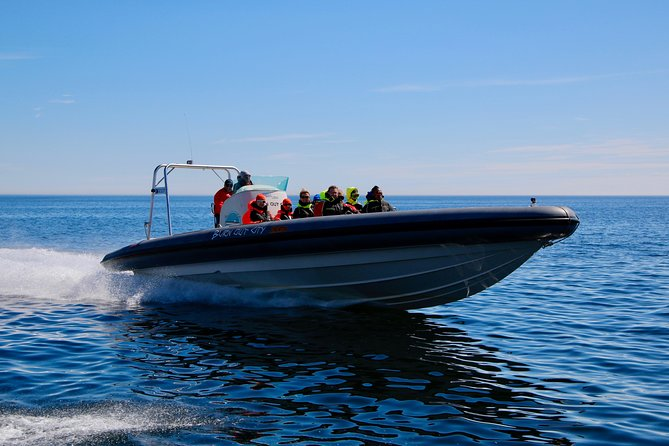 Helsinki Shore Excursion: Private Helsinki Archipelago High-speed Boat Cruise photo 2