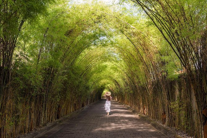 Bali Village With Bamboo Forest Tour
