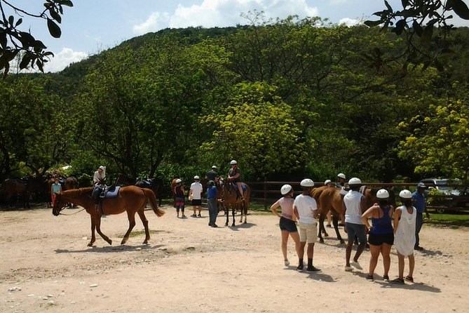 Green Grotto Caves and Horseback Riding from Falmouth