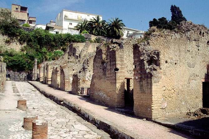 Pompeii, Herculaneum, Vesuvius Tour on Luxury bus from Naples