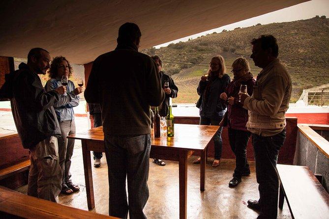 Las Palmas Shore Excursion: Private Volcanic Caldera, Teror Village and Wine-Tasting Tour
