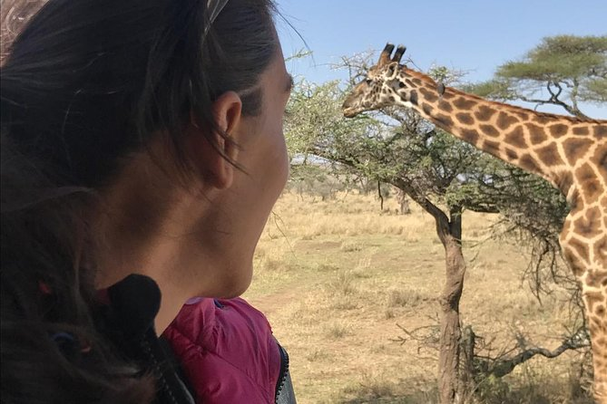 3 days Safari to Tarangire ,Lake Manyara and Ngorongoro crater