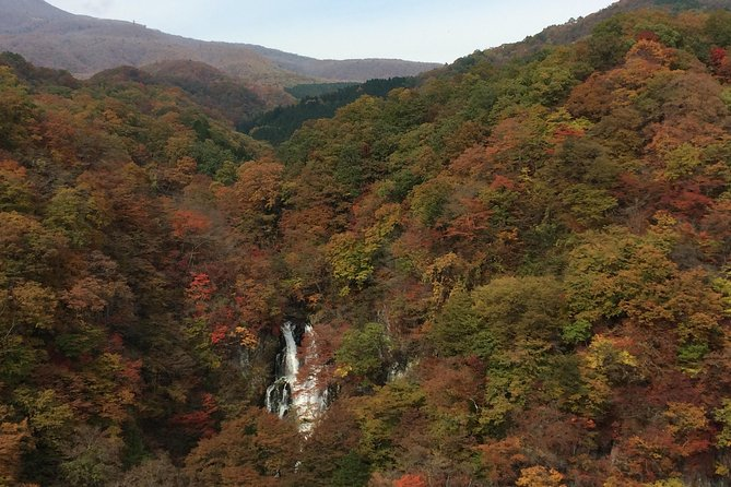 1-Night 2-Day Room & 2 Meals: Hike National Park + Walk Toshogu World Heritage photo 13