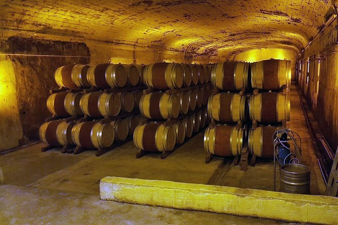 Private Full-Day Tour of Cotes du Rhone with Wine Tasting from Avignon photo 2