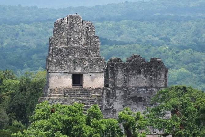 Tikal Mayan Adventure - 1 Day Tour