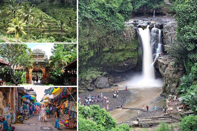 Amazing Half-Day Tour : Ubud Waterfall Trip