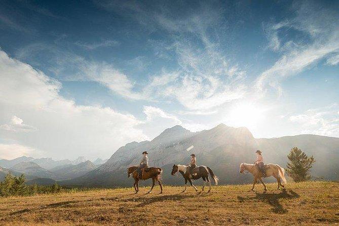 2-Hour Horseback Trail Ride in Kananaskis