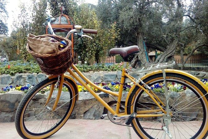 Biking & Art in Lima