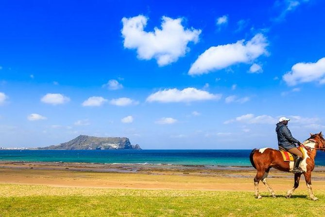 Jeju Canola blossoms festival -horse riding-folk village tour