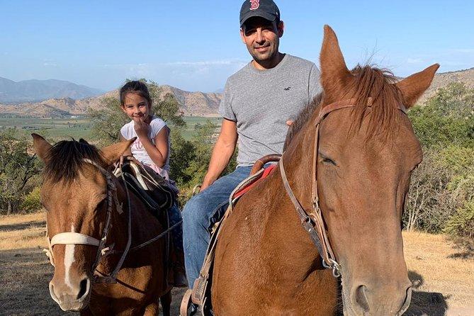 Horseback rides Santa Cruz, Chile
