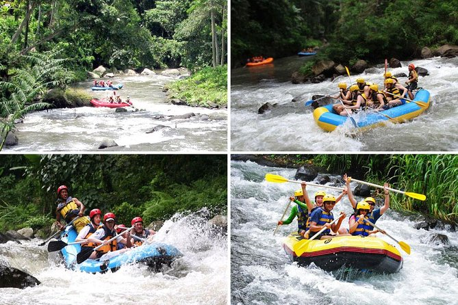 Amazing Ayung White Water Rafting Adventure